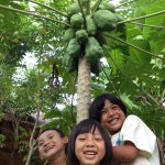 children at our farm csf thailand
