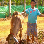 Our farm - Children's Shelter Foundation